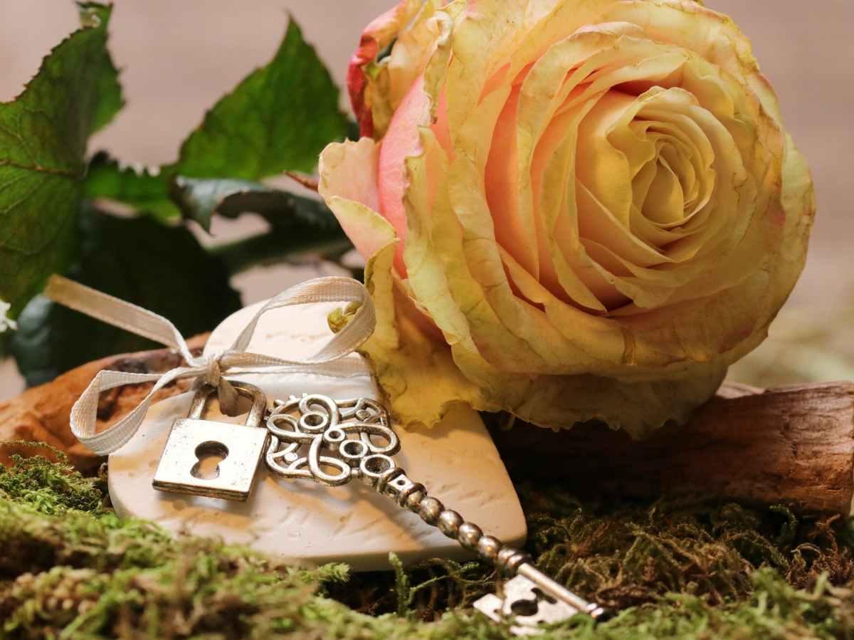 Love is the Key(Devotional)